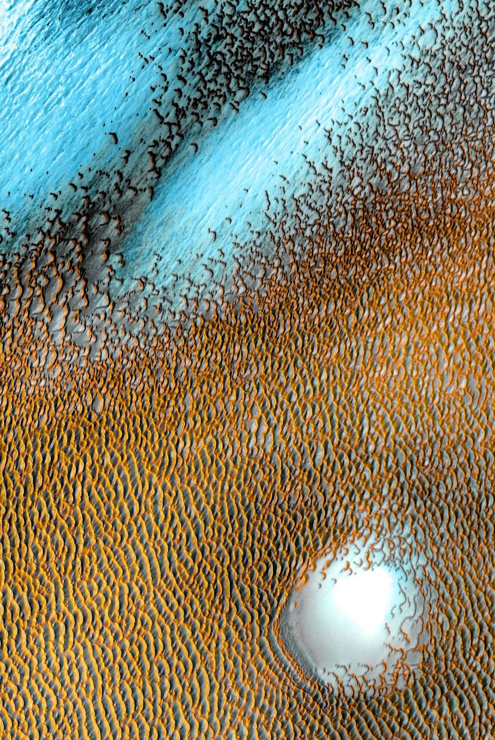 Wind-sculpted sea of blue dunes on Mars captured by the Odyssey orbiter.