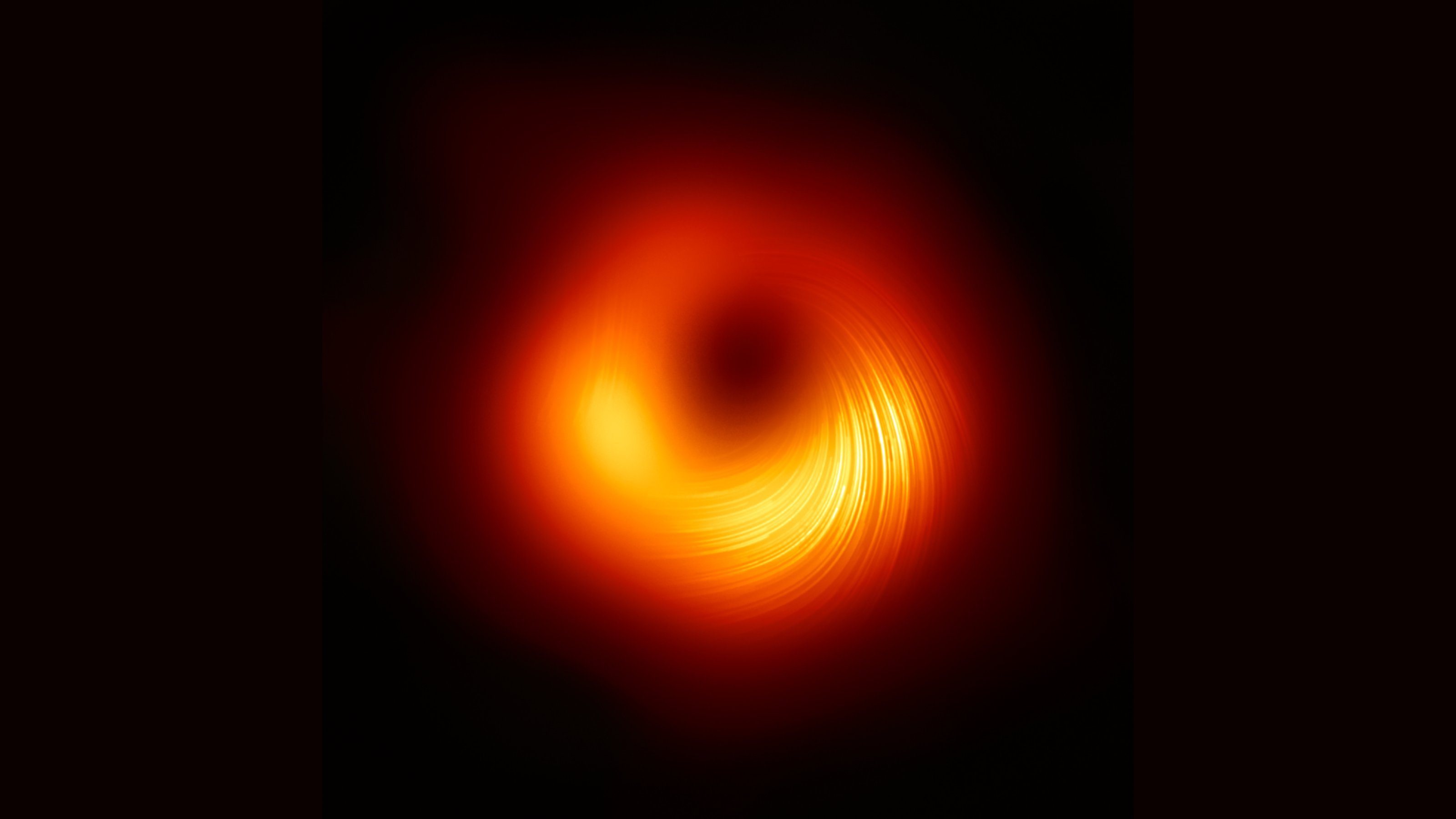 Magnetic Field around a Black Hole for the First Time.
